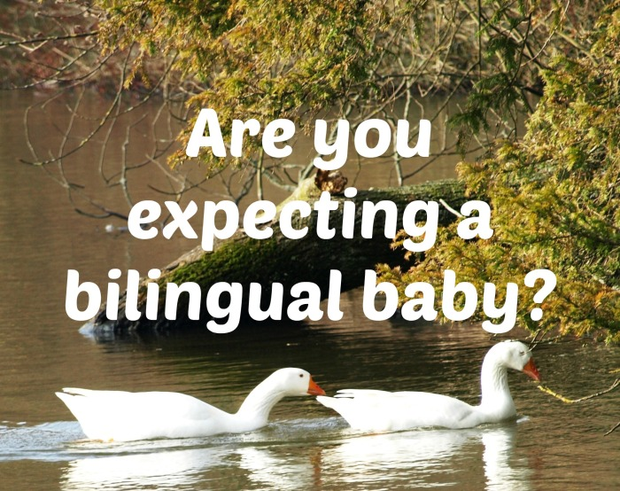 Are you expecting a bilingual baby?